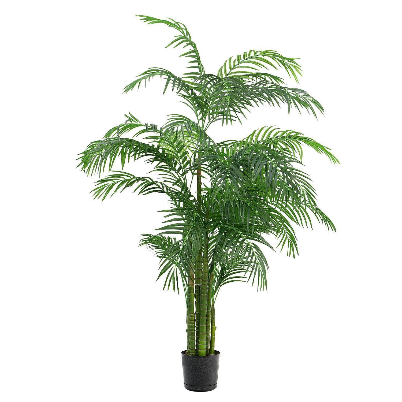 искусственные пальмы казахстан фото колонку вначале